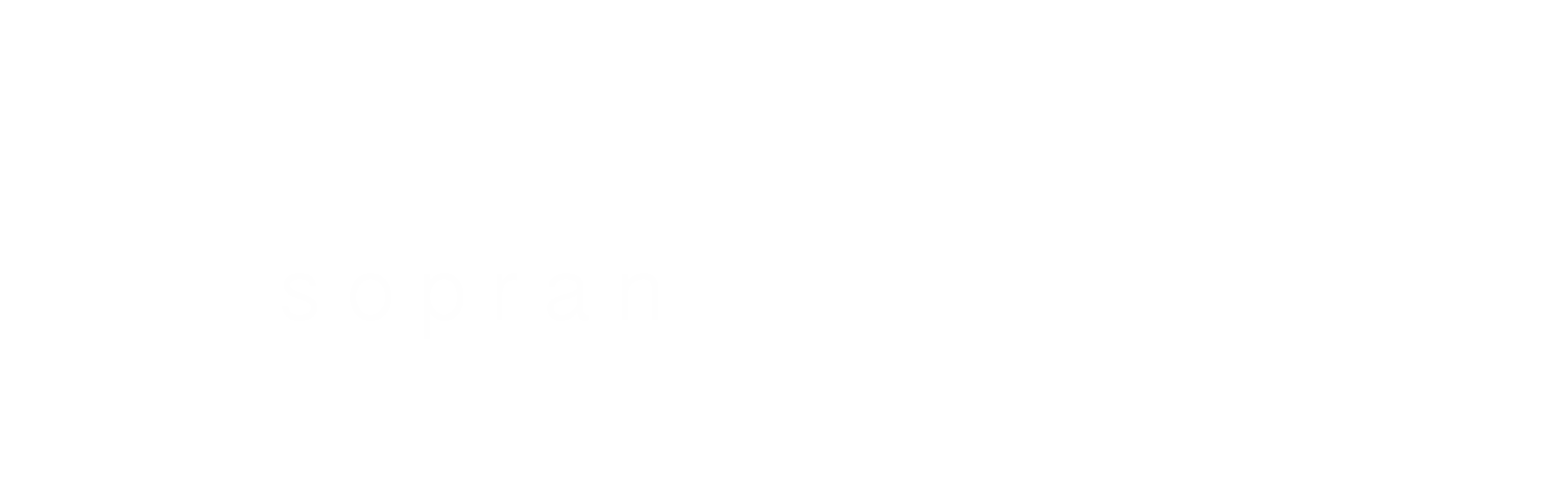 anna willerding